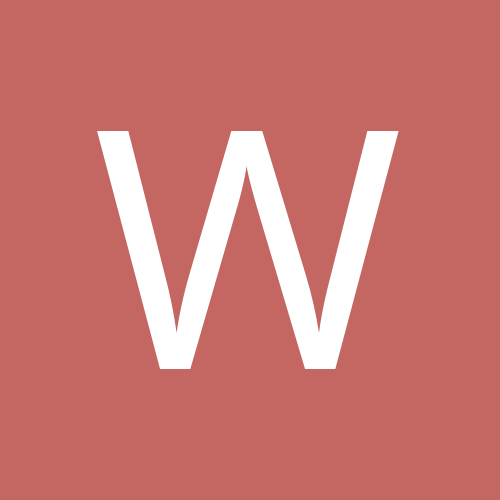 wombat02