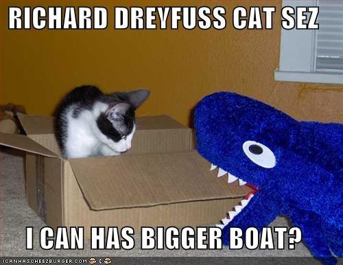 bigger boat jaws cat.jpg